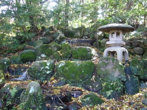 oyama-jinja-11-26-2008-9-32-17-pm