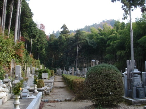 I climbed some stairs to find this cemetery surrounded by mountains.